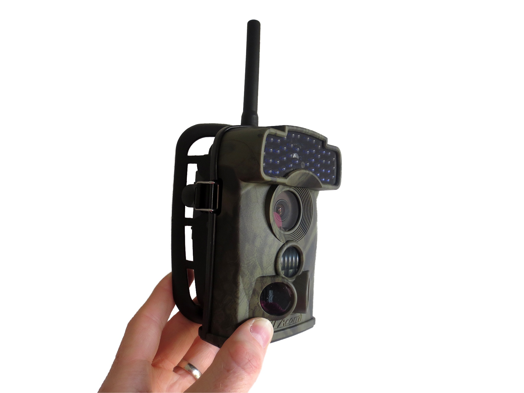 wildlife camera trap