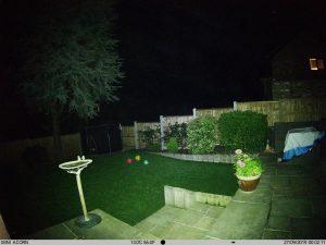 colour night vision trail camera